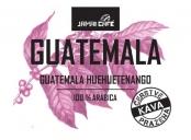 Pražená zrnková káva - Guatemala Huehuetenango (500g)